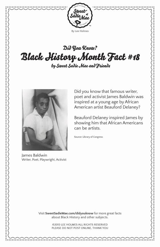 James Baldwin: Writer, Poet, Activist: Black History Facts